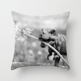 Dandy Dino Throw Pillow