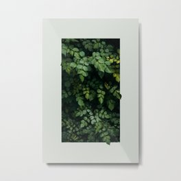 Growth Metal Print