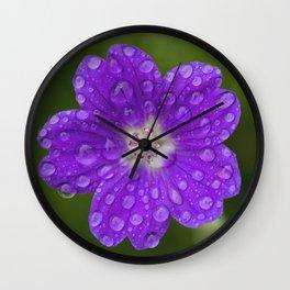 A Cranesbill Geranium blooms in a Spring Rainshower Wall Clock