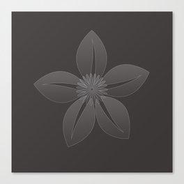 Cute Sheer Jasmin Flower Canvas Print