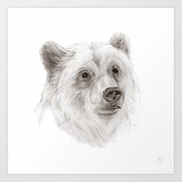 Grizzly :: A North American Brown Bear Art Print