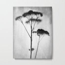 Black and White Vintage Style Botanical Photograph Metal Print