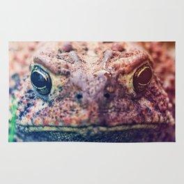 HollyWood Toad Rug