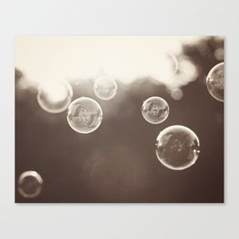 Bubbles Photography, Soap Bubble Laundry Room Art, Bathroom Photo, Brown Bath Picture Restroom Print Canvas Print
