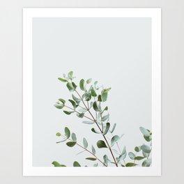 Botanical 1 Art Print