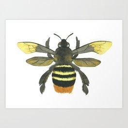 Bumble Bee Watercolor Art Print Art Print