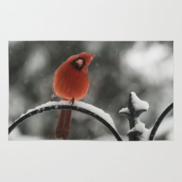 Curious Red Cardinal in Snowstorm Rug