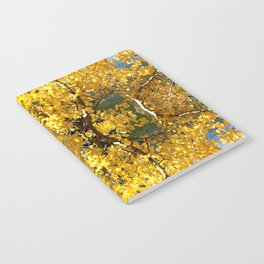 Reflected Colorado Aspen Leaves  Notebook