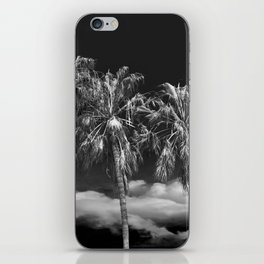 Palm Trees in Black and White on Cabrillo Beach iPhone Skin