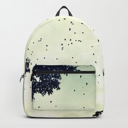 Flock of birds at sunset Backpack