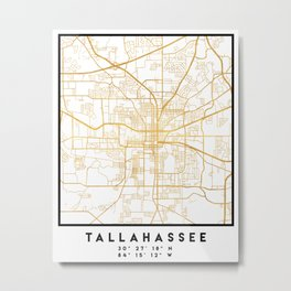 TALLAHASSEE FLORIDA CITY STREET MAP ART Metal Print