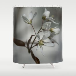 The fragile start of spring Shower Curtain