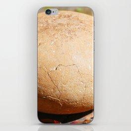 Boulder Dash iPhone Skin