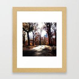 Final Morning Walk Framed Art Print