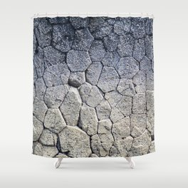 Nature's building blocks Shower Curtain