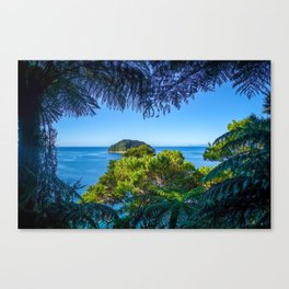 Track view in Abel Tasman National Park, New Zealand Canvas Print