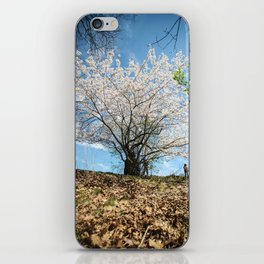 Time to Grow and Bloom iPhone Skin