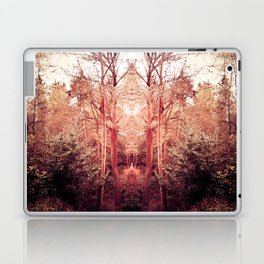 The Ravine Portal Laptop & iPad Skin