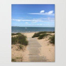 Breezy Seaside Path Canvas Print