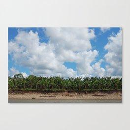 peru - la selva Canvas Print