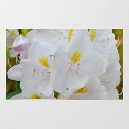 White Rhododendron by Teresa Thompson Rug