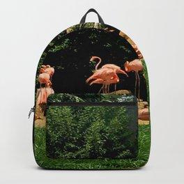 Flock of Flamingos Backpack