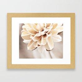 Cream Beige Flower Photography, Light Brown Pale Neutral Nature, Floral Botanical Framed Art Print
