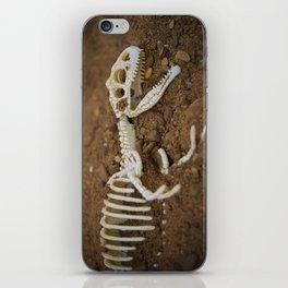 Allosaurus skeleton iPhone Skin