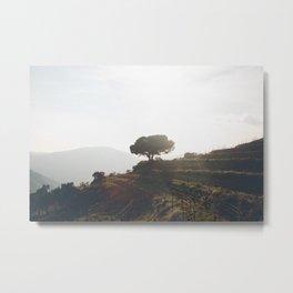 Douro valley Metal Print
