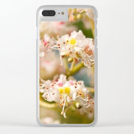 Aesculus chestnut tree blossoms Clear iPhone Case