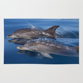 Beautiful Spotted dolphins Stenella frontalis Rug