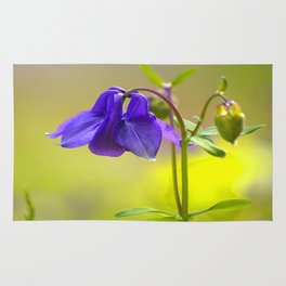 Purple Columbine In Spring Mood Rug