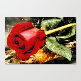 Art A Rose Is A Rose © Canvas Print