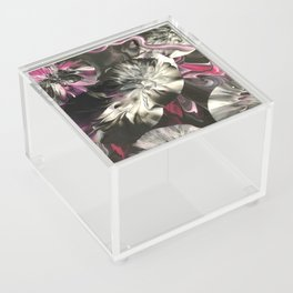 Biggi Acrylic Box