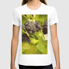 grapes and vines T-shirt