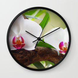 Orchid World Wall Clock