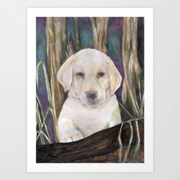 Labrador retriever white puppy in forest original art print Art Print