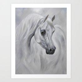 White Arabian Mare Art Print