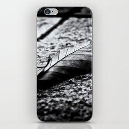Autumn Memories iPhone Skin