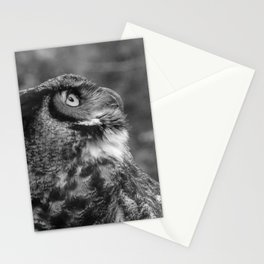 The Gaze by Teresa Thompson Stationery Cards