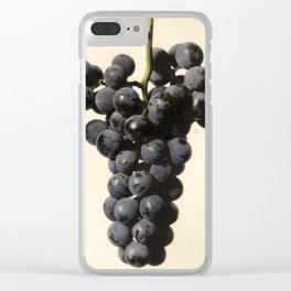 Vintage Concord Grapes Illustration Clear iPhone Case