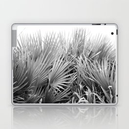 Palm Pool Laptop & iPad Skin