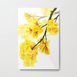 yellow trumpet trees watercolor yellow roble flowers yellow Tabebuia Metal Print