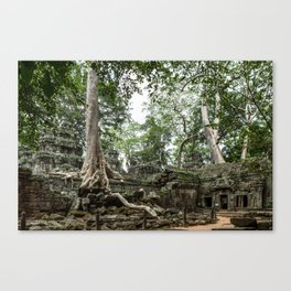 Ta Phrom, Angkor Archaeological Park, Siem Reap, Cambodia Canvas Print
