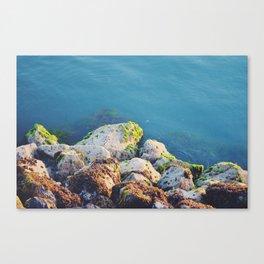 Shore rocks Canvas Print