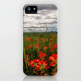 Brighten the Day - Indian Paintbrush Wildflowers in Eastern Oklahoma iPhone Case