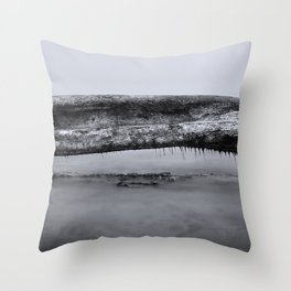 Long Exposure Log Throw Pillow