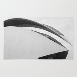 C A L A T R A V A | architect | City of Arts and Sciences Rug