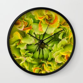 Pon Pon Trilly Ranunculus Wall Clock
