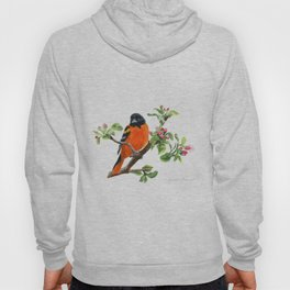 Orchard Prince by Teresa Thompson Hoody